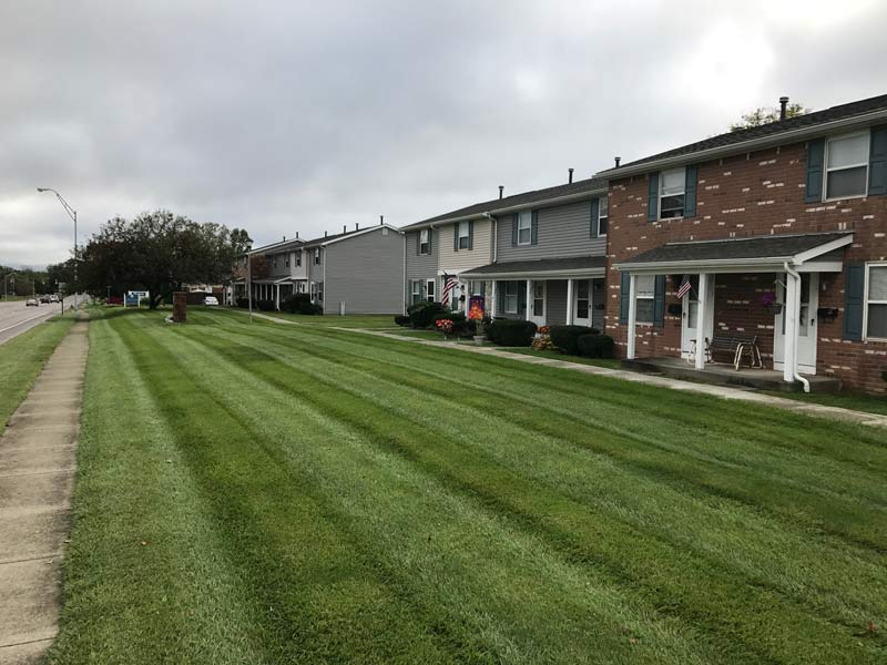 Recently mowed front lawn near sidewalk by Columbus Landscaping company.