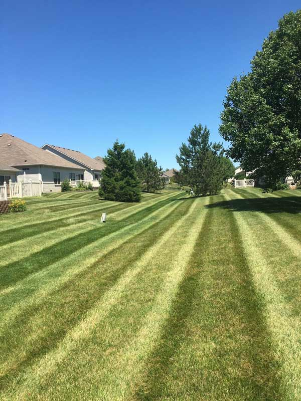 Long strip of mowed lawn, landscaping services part of Ivanoff Lawn Care and Landscaping services.