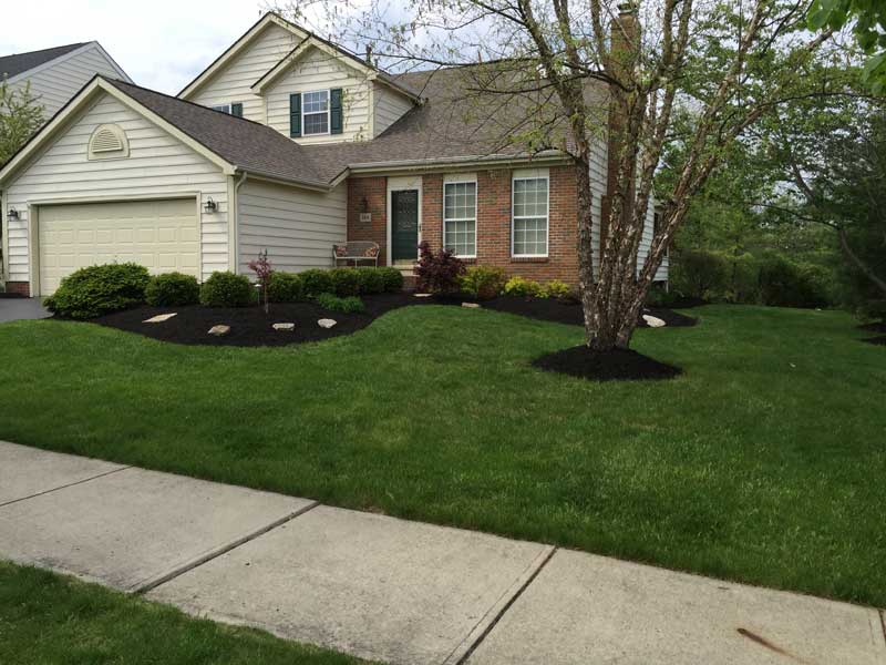 Front yard of house by sidewalk, landscape and lawn care by Ivanoff.