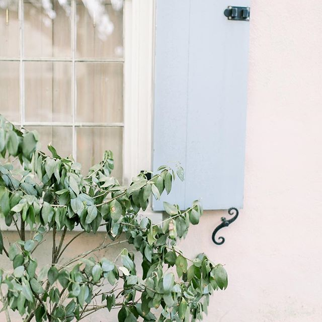 We will be opening at noon today! So sorry for any inconvenience! Don't forget our Spring Cleaning Sale is still going on this week! See y'all soon! ⠀ .⠀ .⠀ .⠀ .⠀ #Charleston #westashley #shoplocal #charlestonblog #homeandgift #homesweethome