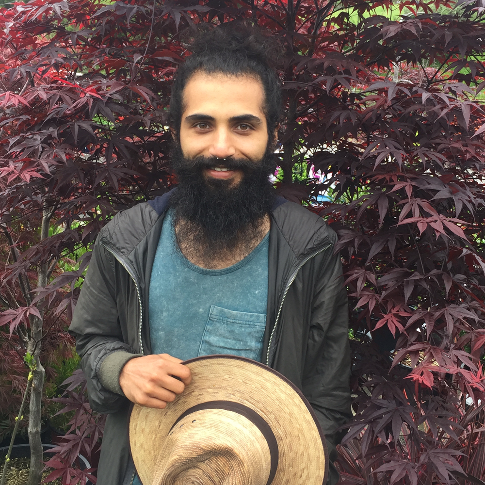 Sam Tajik   Sam recently relocated to the Bay Area from Iran. His numerous talents include carpentry, painting, and playing the harmonica! He is the nursery Jack of all trades, making sure the plants are cared for, that the nursery is tidy, and that merchandise makes it safe into customers' cars.