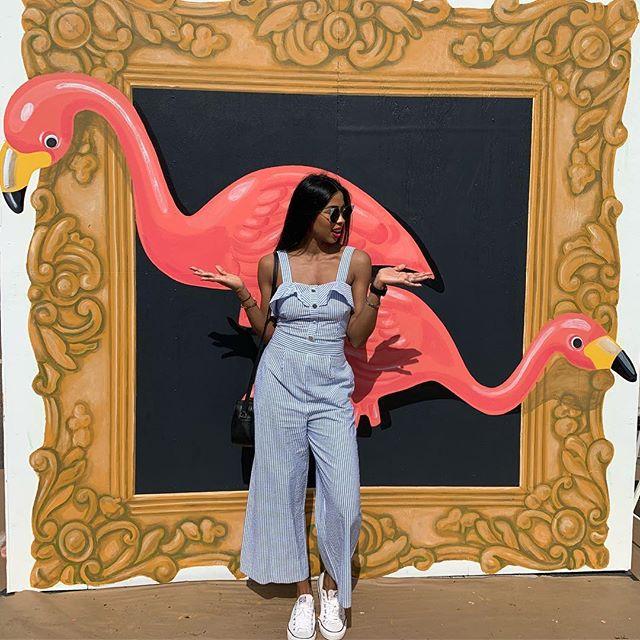 Made new friends today...Where is Flamingo emoji??? 🙈