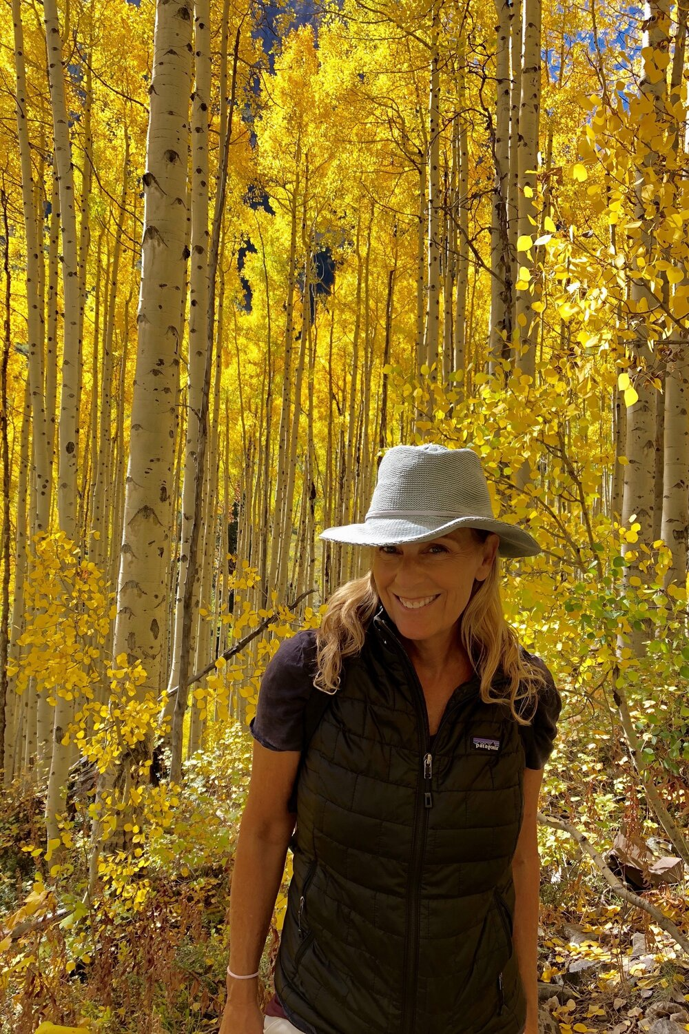In the woods near Aspen Colorado taking in the foliage! My happy place : Wendy Abrams Principal wendy@wilderluxepublicrelations.com