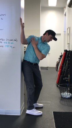 Backswing Mobility Screen.PNG