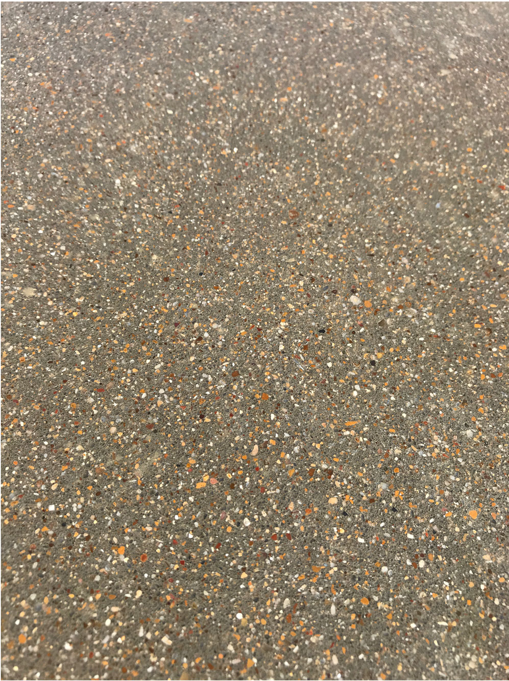 "Small aggregate exposure 'Class B"" Craftsman Concrete Floor. Picture taken after cut but before polish. This floor's dark color is due to it's 10% fly ash content. The aggregate used is 'native' rock. Notice the bright colors and consistent exposure this rock facilitates."