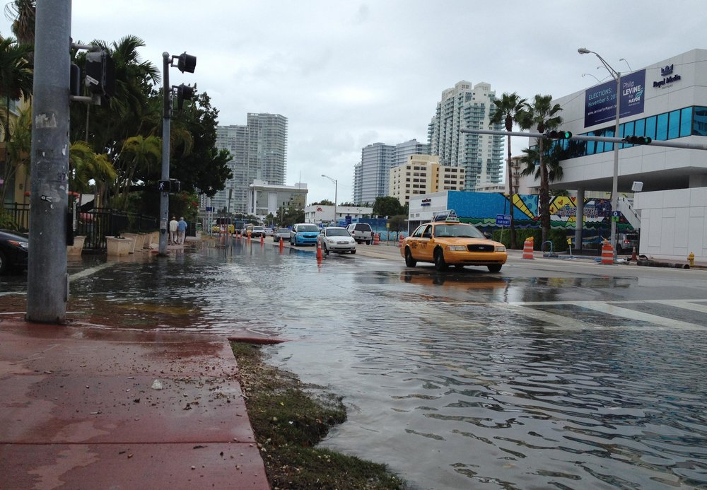 Flooding in Miami. Photo courtesy of Reuters/Zachary Fagenson.