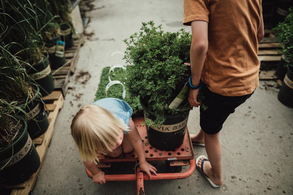 colorado springs family lifestyle gardening photography-8.jpg