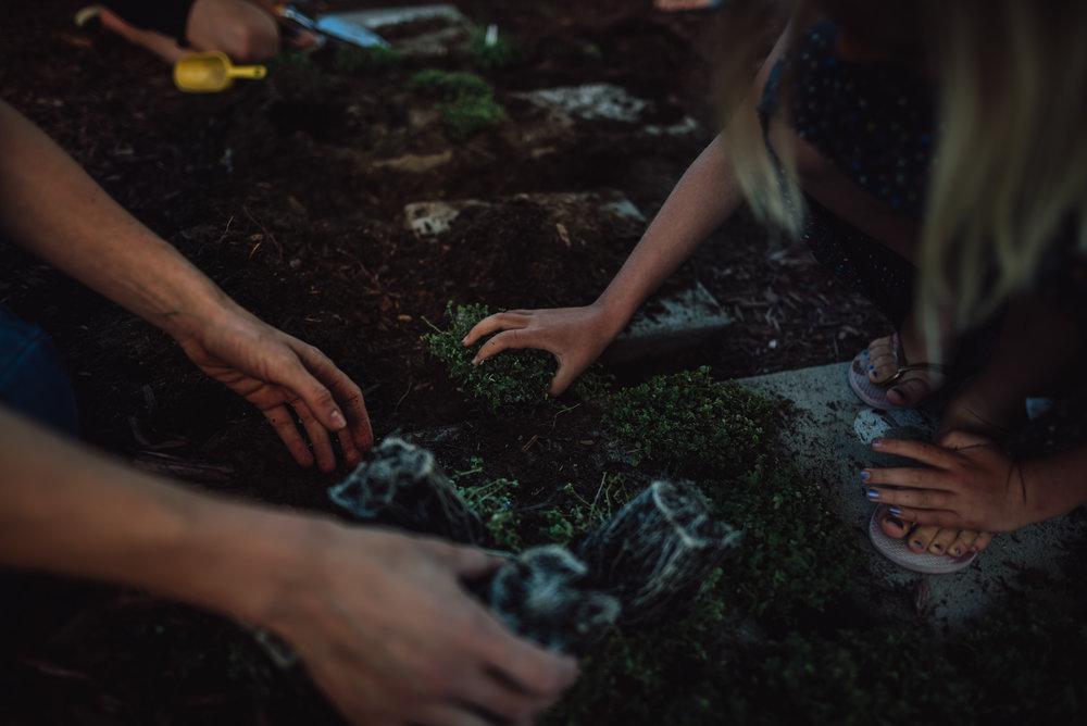 colorado springs family lifestyle gardening photography-33.jpg
