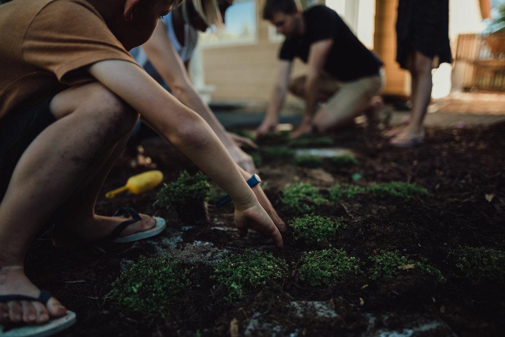 colorado springs family lifestyle gardening photography-46.jpg