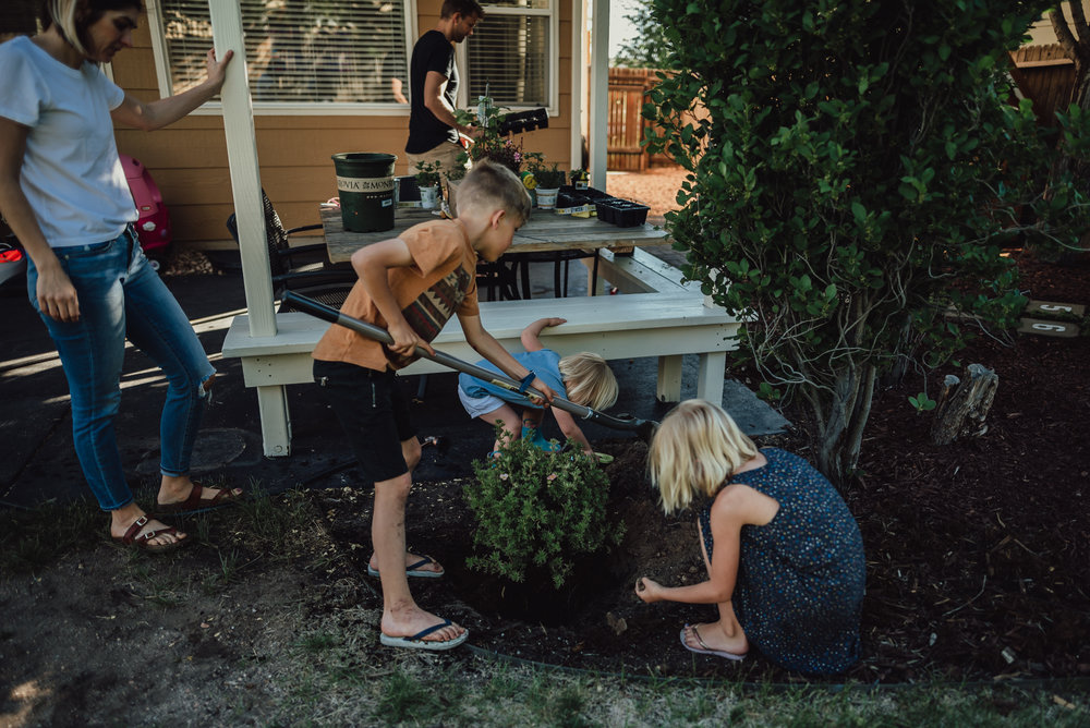 colorado springs family lifestyle gardening photography-60.jpg