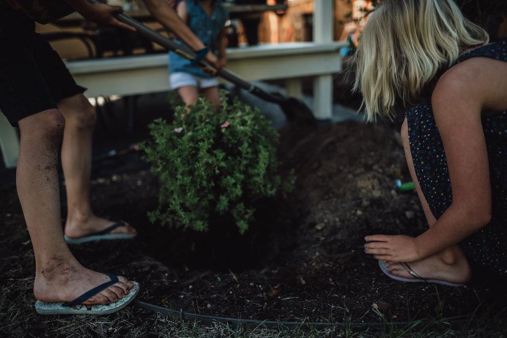 colorado springs family lifestyle gardening photography-61.jpg