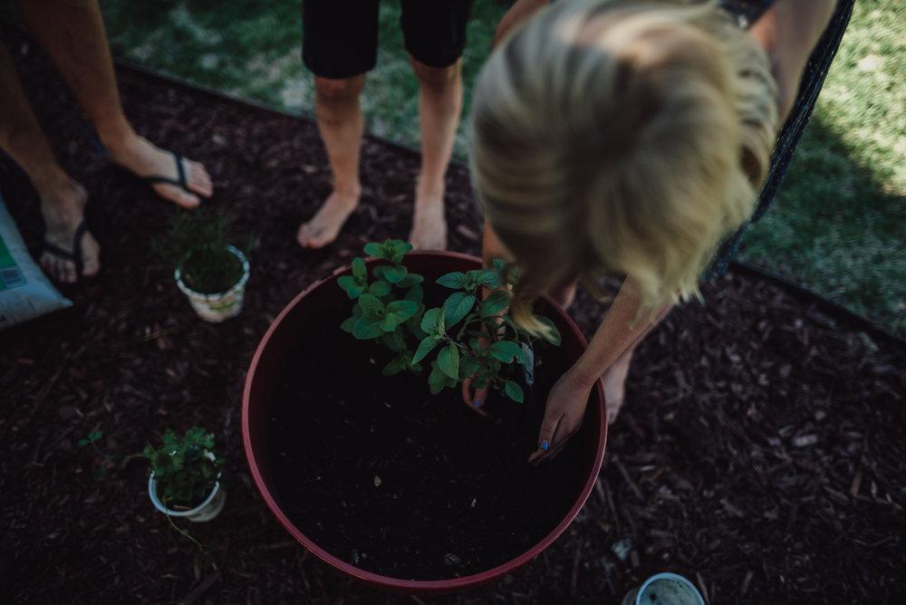 colorado springs family lifestyle gardening photography-66.jpg