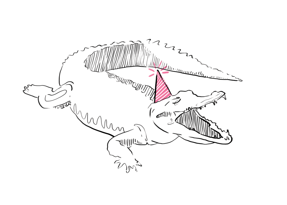 gator for web.png