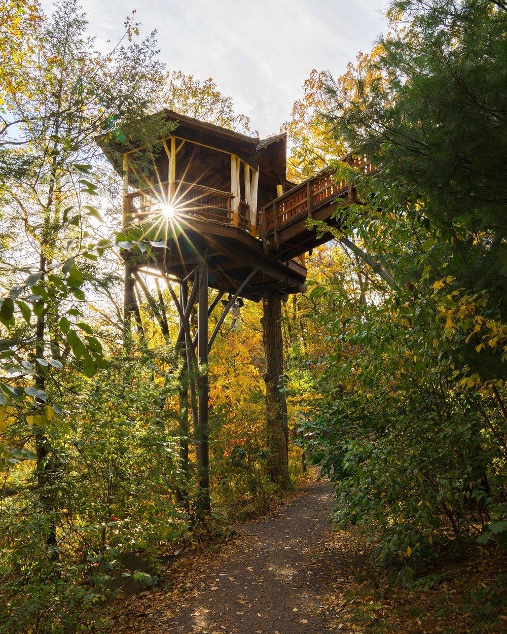 Pennsylvania Treehouse