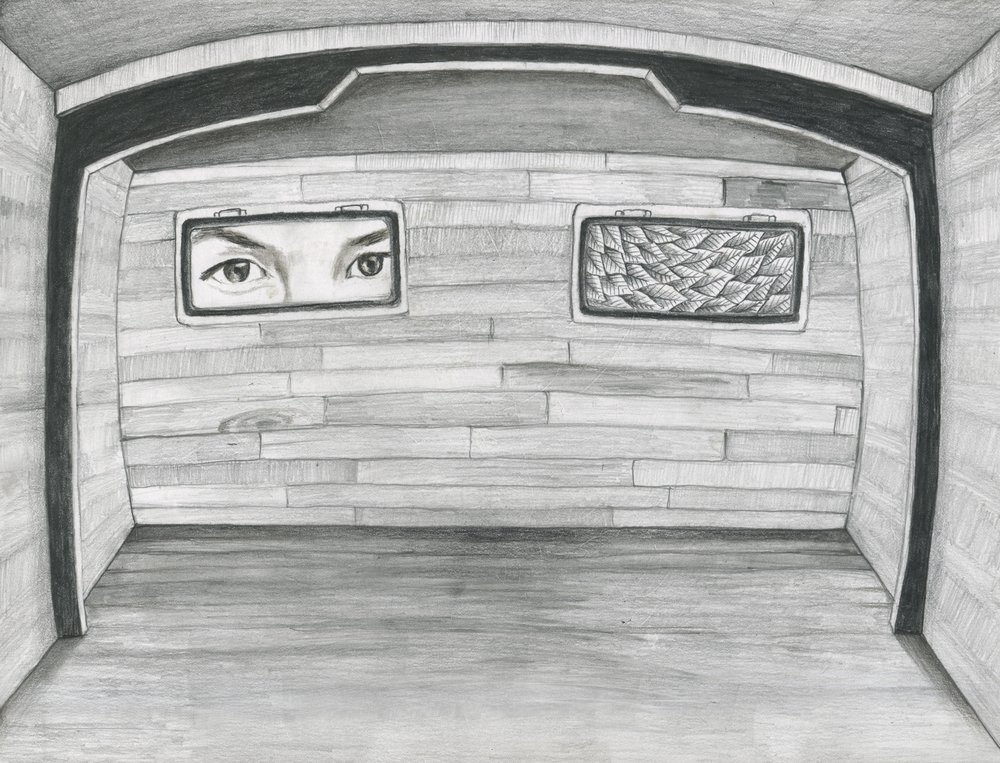 "Cabin Fever  12"" x 9"" graphite on paper  original available prints available"