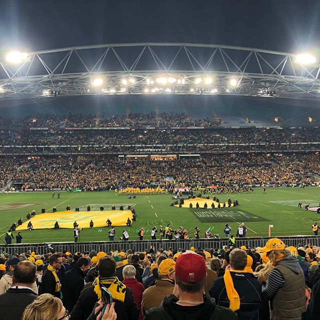 Game on! #bledisloecup #gameone