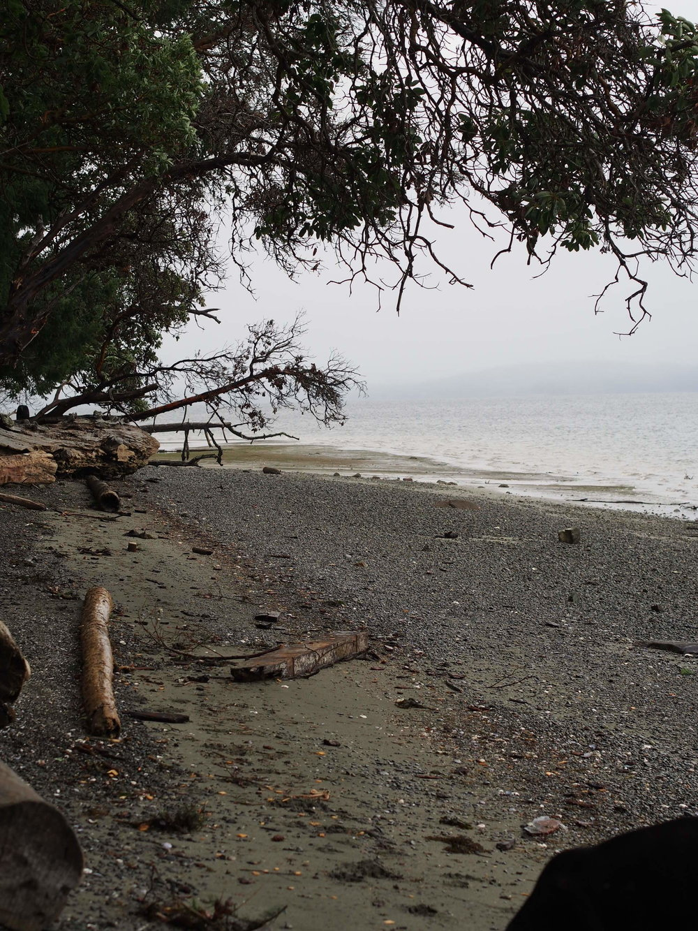 Crofton View from the Public Beach, Vancouver Island BC Canada