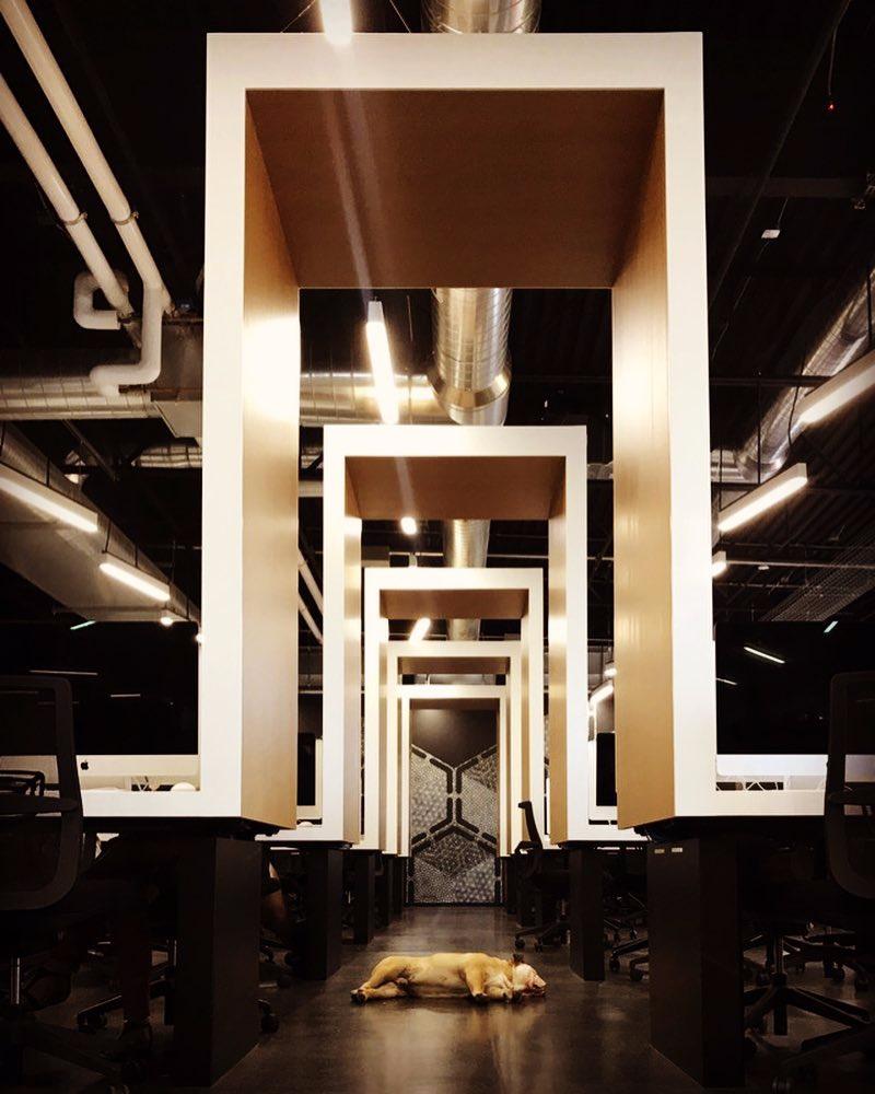 AR  -studio -architectures - ecole - 42  - US -Freemont-USA-Xavier-Niel-free-illiad (1).jpg