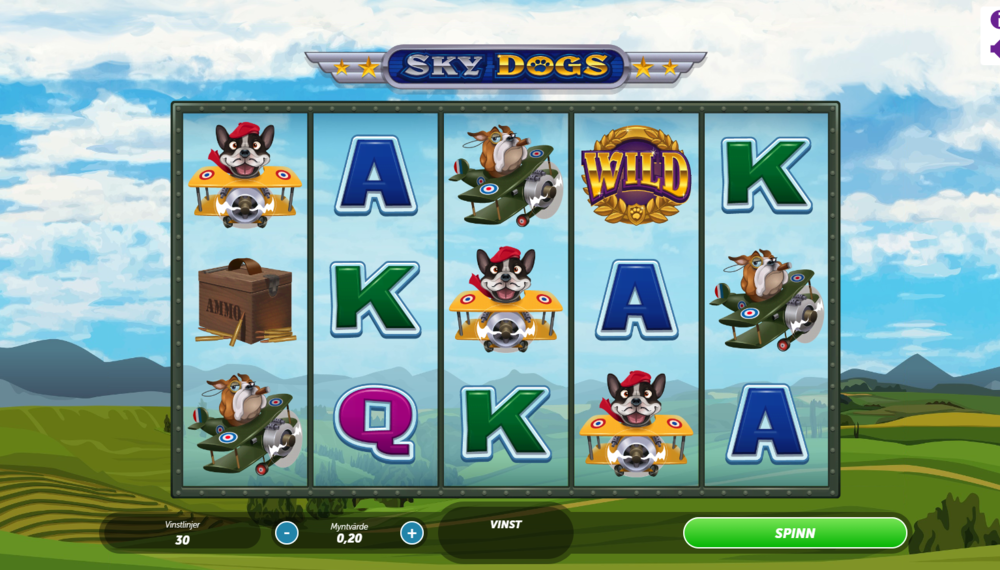 skydogs13.PNG