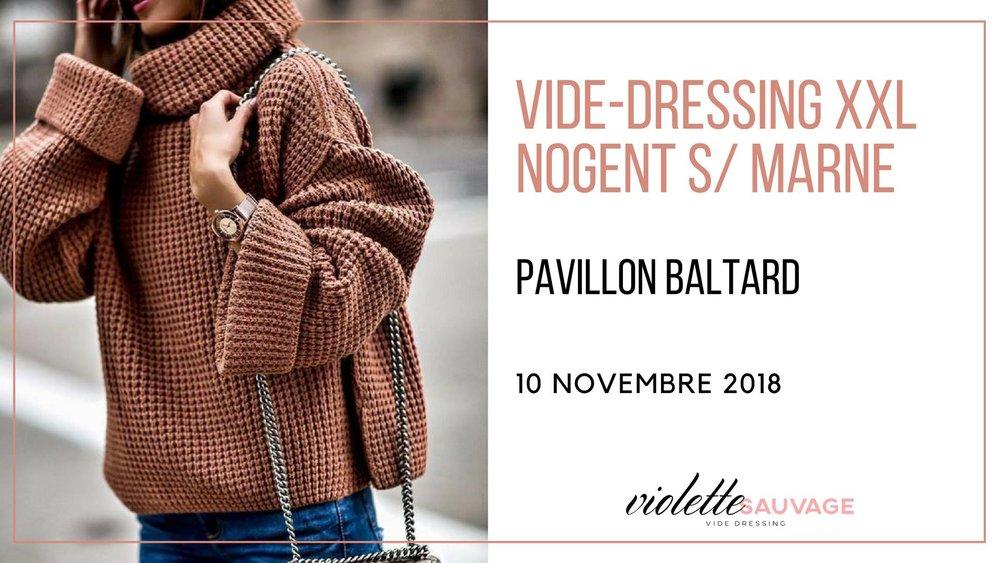 Vide-dressing-Violette-sauvage-Novembre-2018.jpg