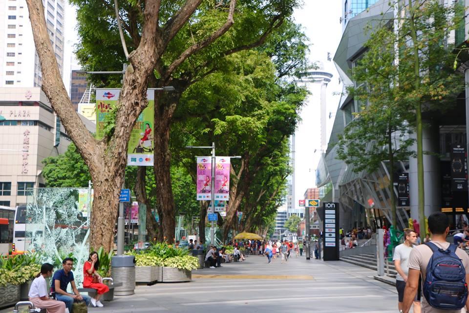 Singapore#38 - 2017
