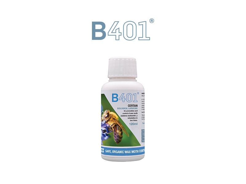 B401 Wax Moth