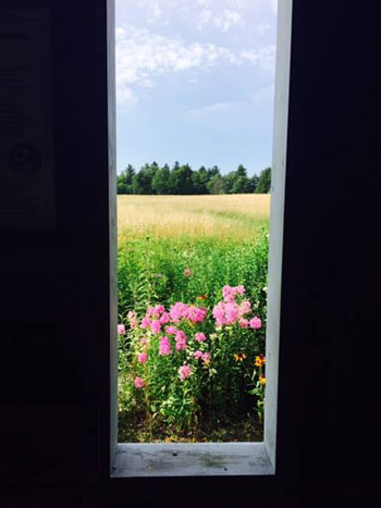0715_window.jpg