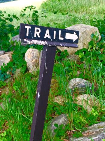0715_Trail.jpg