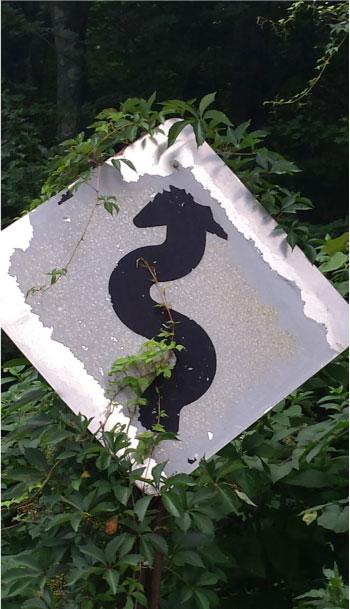 0817-arrow.jpg