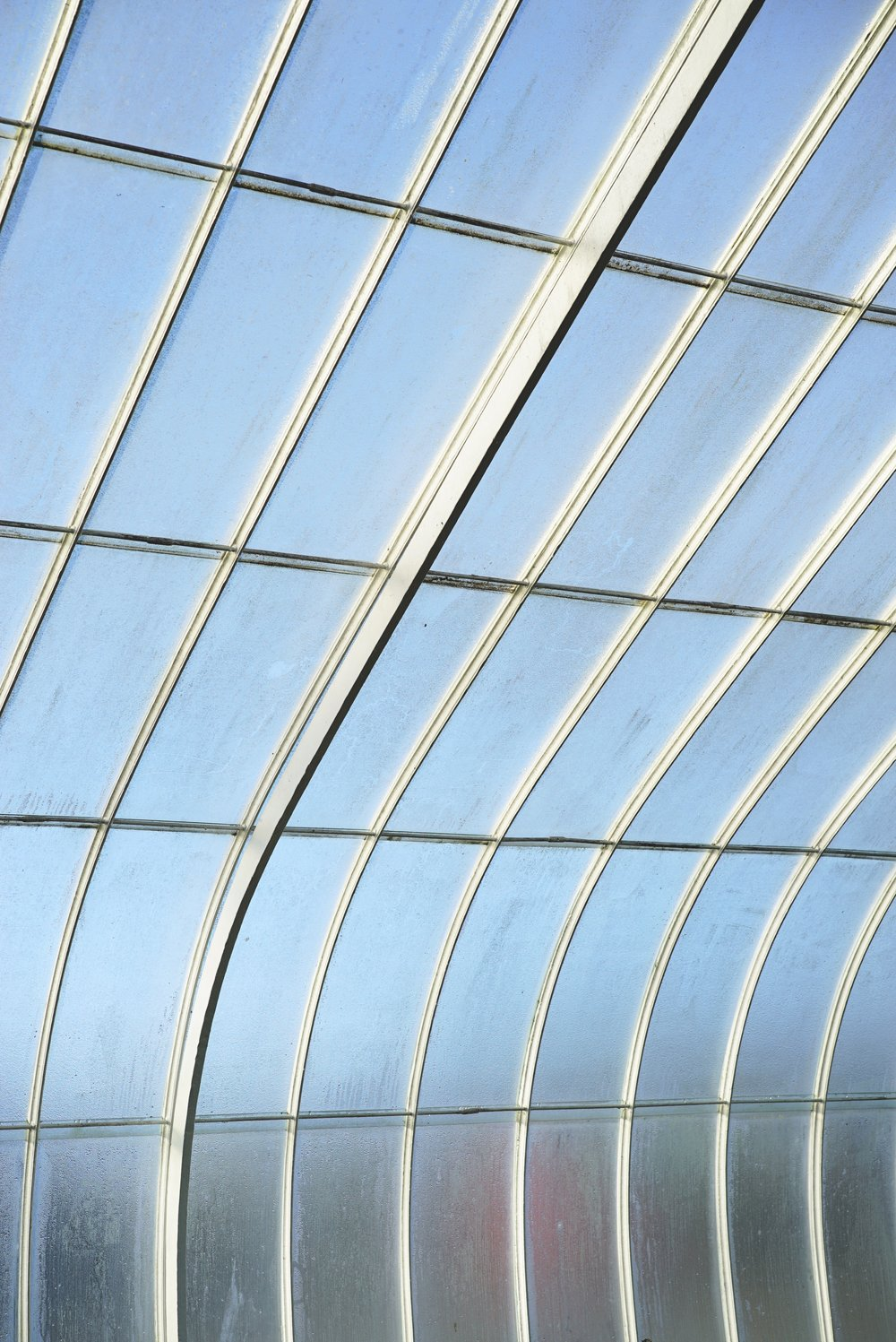 Glasgow Botanic Gardens Glasshouse