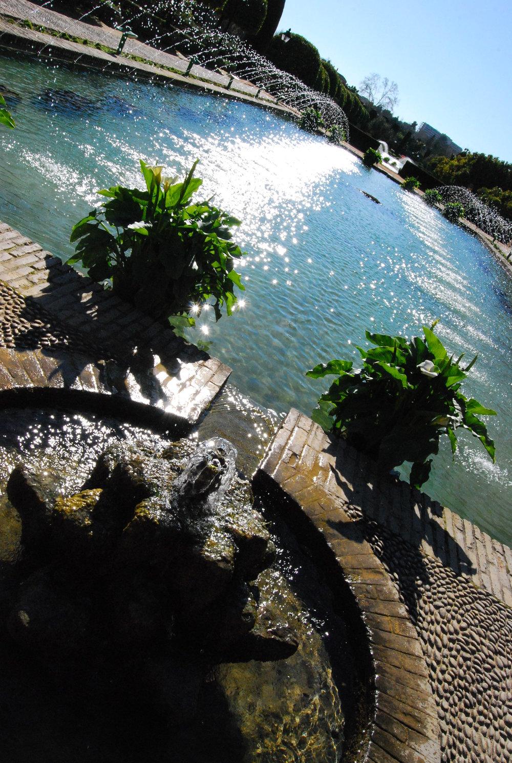 Pool - Cordoba, Spain.JPG