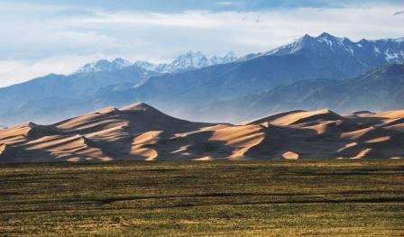 Sand Dunes web
