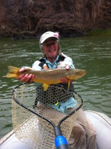 barbaras-big-brown-trout