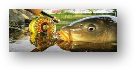 flyfishingcarp1