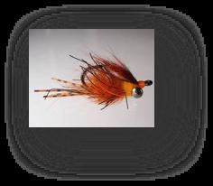flyfishingcarp4