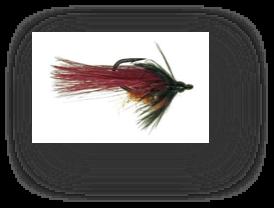 flyfishingcarp5