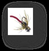 flyfishingcarp6