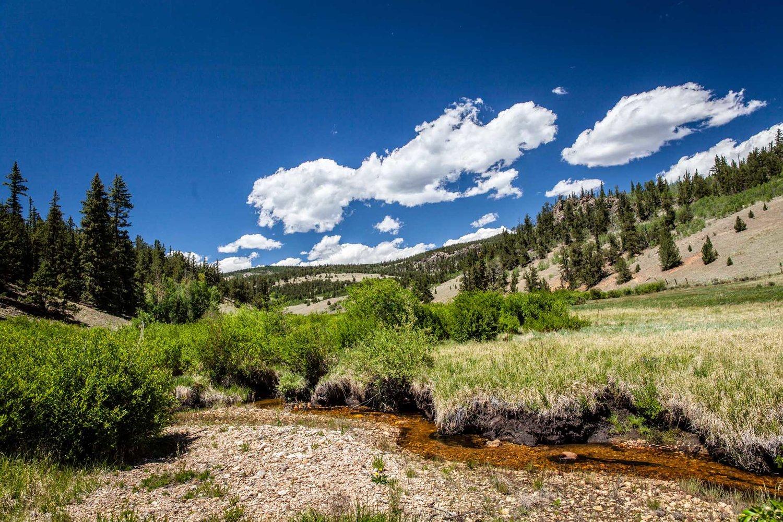 Habitat — Blog — Colorado Trout Unlimited
