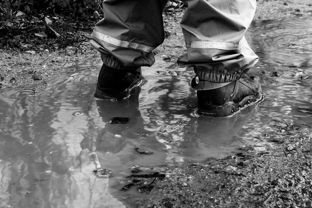 puddle-3157923_1920.jpg