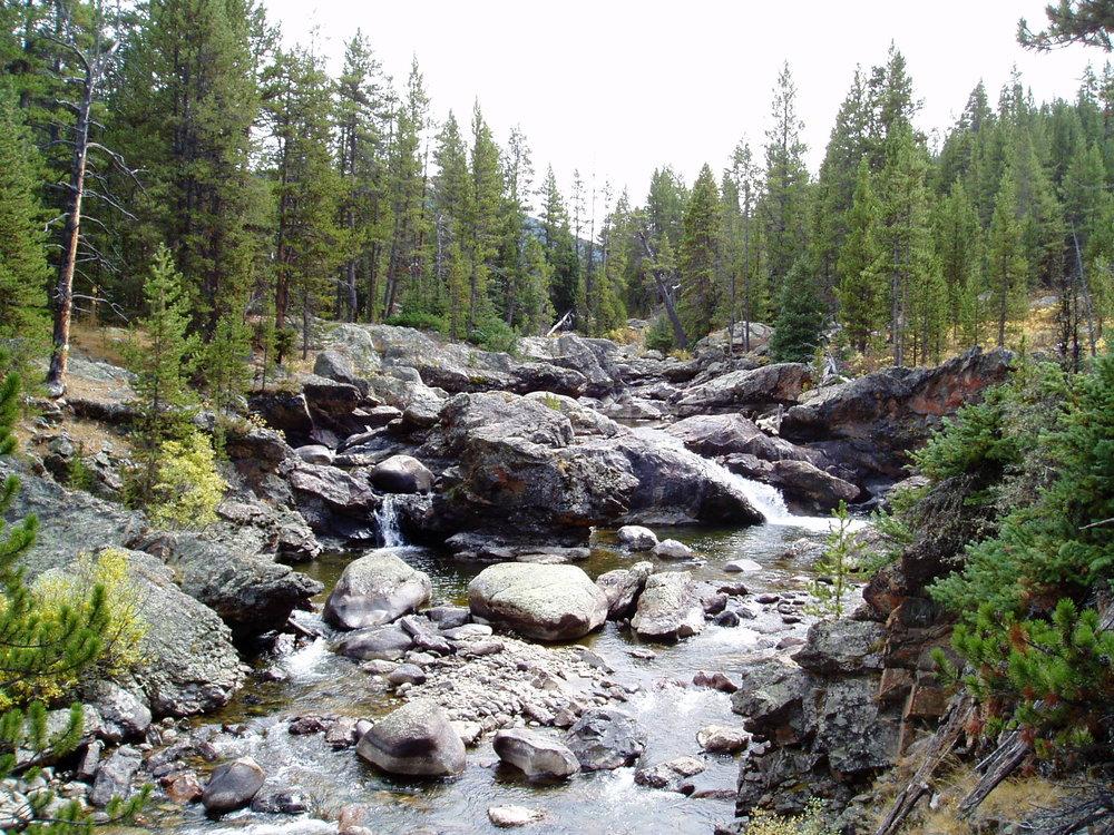 Pictured: Cache La Poudre River.
