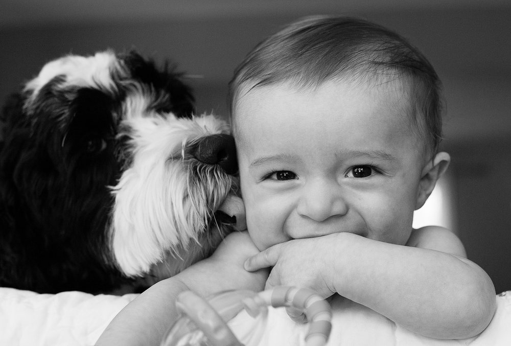 bethanybrinkworth_lifestyle-baby-dog.jpg