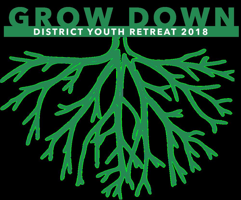 DYR 2018 Logo.png