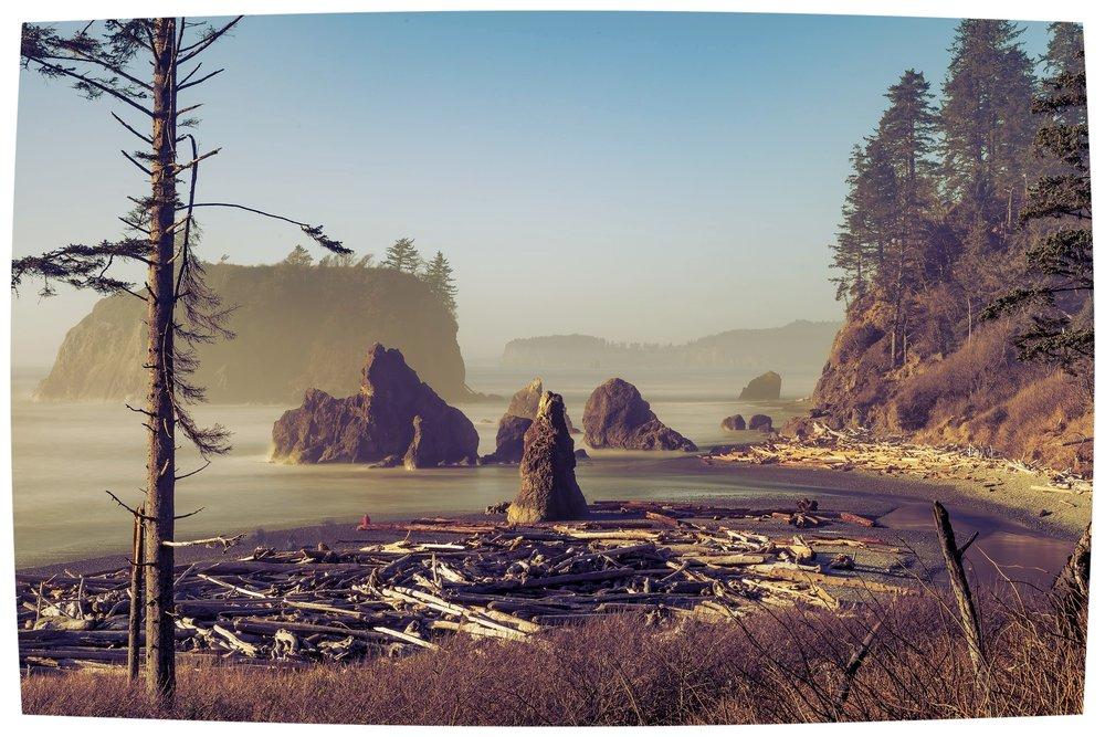 beach-2090015_1920.jpg