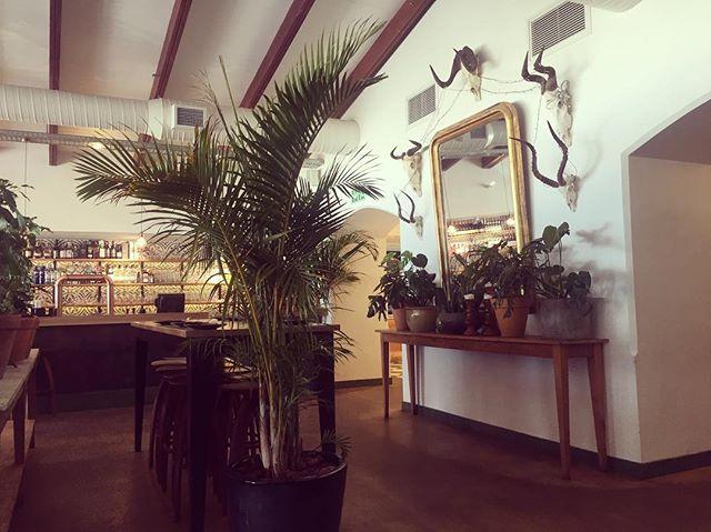 @mantracafe.za botany dressing #capetown #capetownsouthafrica #cafeculture #africa #interiordesign #interior_design #interiorstyling #interiorsforall #interiorinspiration #monday #mondayinspiration #design #designstudio #london #londonstyle #residentialdesign #interiorinspo