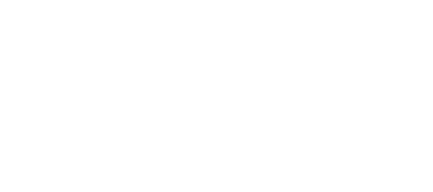 Bride Disrupted
