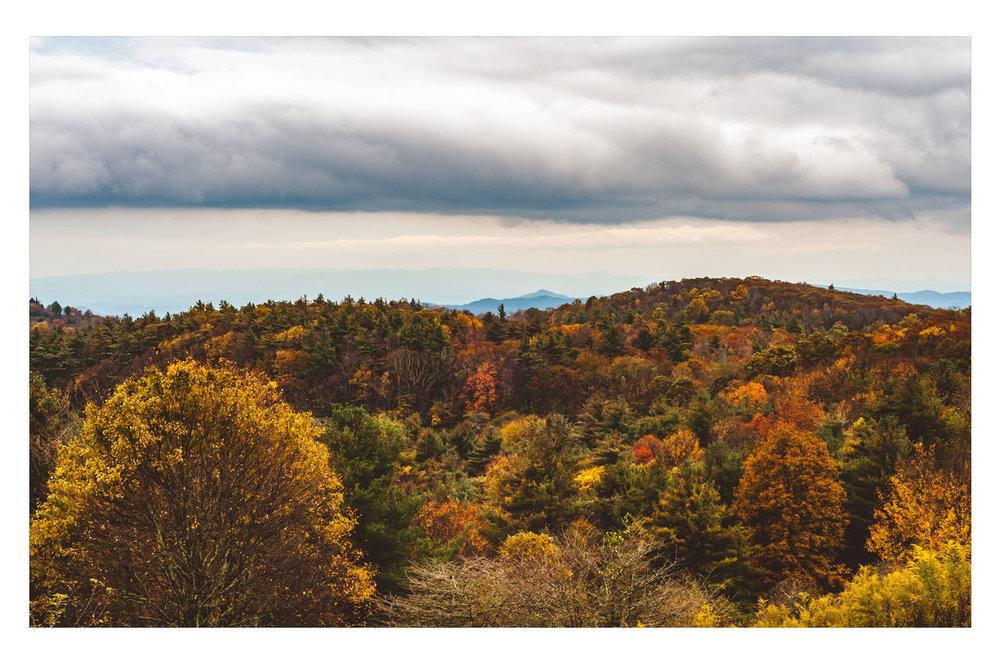 fall2009C.jpg