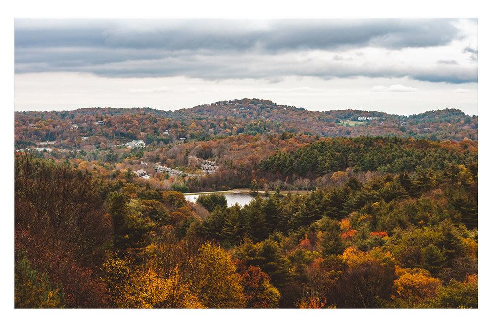 fall2009D.jpg