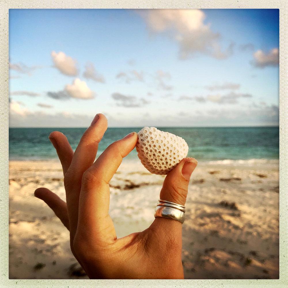 Open Air Places Beach Treasures.jpg