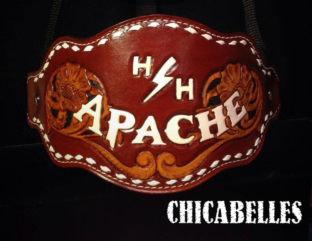 Apache Halter.jpg