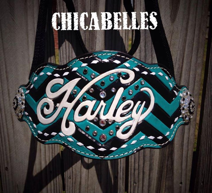 Harley Halter.jpg